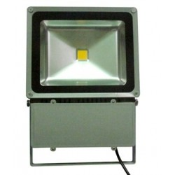 100W led bouwlamp IP65 Warm wit