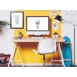 LED lamp | dimbaar | E27 | 4 Watt | vervangt 40 Watt