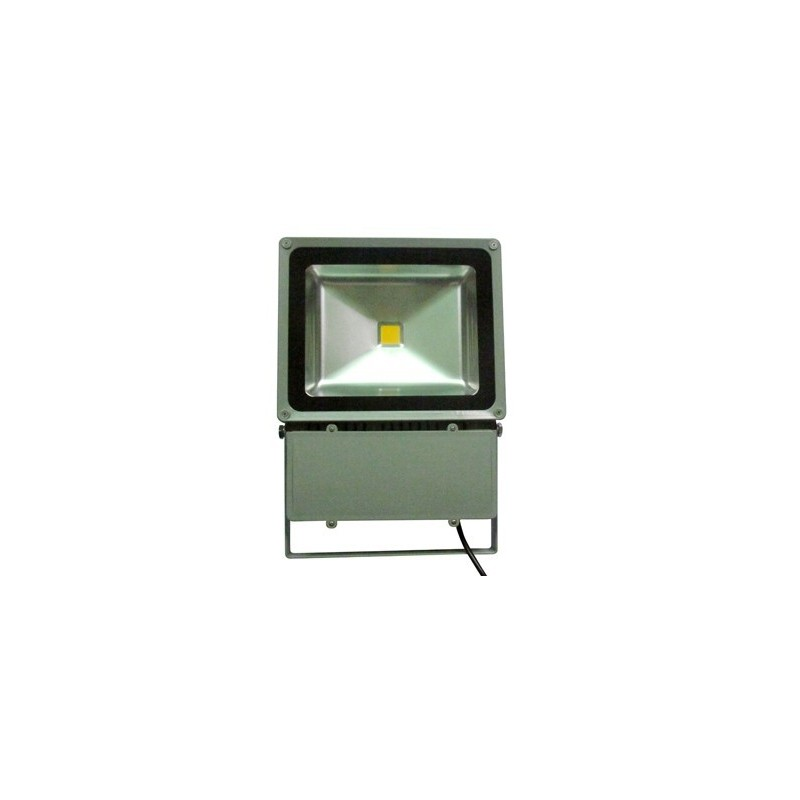 100W led bouwlamp IP65 Warm wit